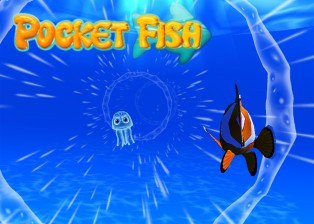 Pocket Fish Stream Rider Game Mode
